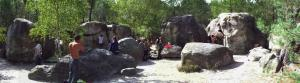 Escalde de bloc à Fontainebleau