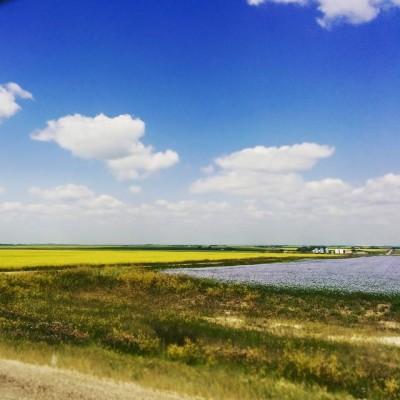 Les Prairies